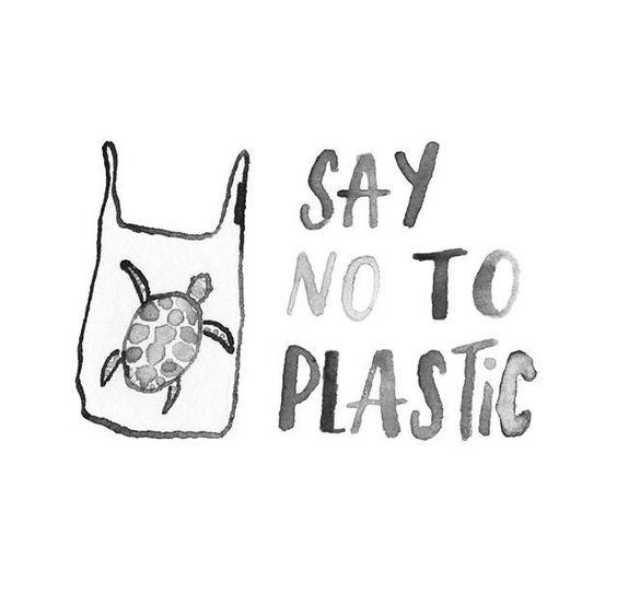 Chemicals in Plastics