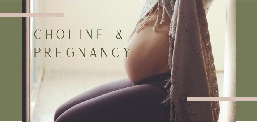 Choline and Pregnancy by Azura